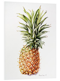 Foam board print  Pineapple, 1997 - Alison Cooper