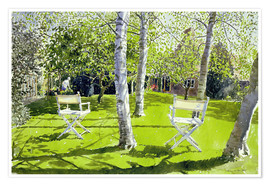 Poster Silver Birches
