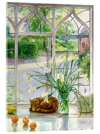 Acrylic print  Sleeping cat in the window - Timothy Easton
