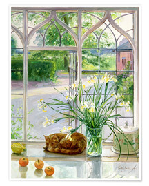 Poster  Sleeping cat in the window - Timothy Easton