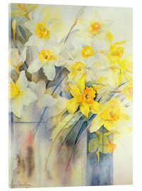 Acrylic glass  Mixed Daffodils in a Tank - Karen Armitage