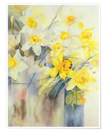 Premium poster Various daffodils in a vase