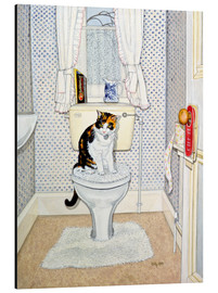 Aluminium print  Cat on the Loo - Ditz