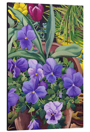Aluminium print  Flower pots with pansies, 2007 - Christopher Ryland