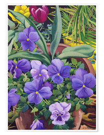 Poster  Flower pots with pansies, 2007 - Christopher Ryland