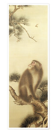 Premium poster  Monkey watching a dragonfly - Japanese School