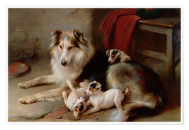 Premium poster  A collie with terrier puppies, 1913 - Walter Hunt