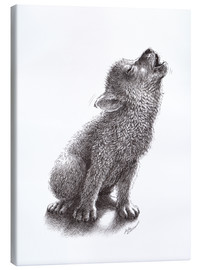 Canvas print  Young Howling Wolf - Stefan Kahlhammer