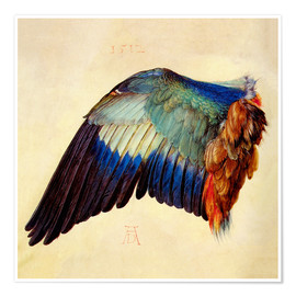 Poster Wing of a blue roller