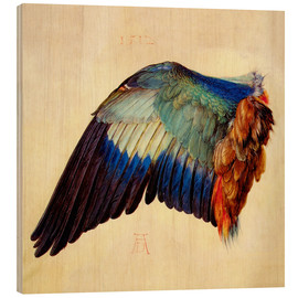 Wood print  Wing of a blue roller - Albrecht Dürer