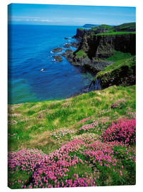 Canvas  Dunluce Castle, Ireland - The Irish Image Collection