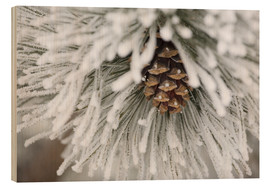 Wood print  Pinecone in frost - Michael Interisano