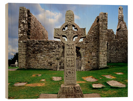 Wood  Clonmacnoise in Ireland - The Irish Image Collection