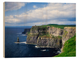 Wood  Cliffs of Moher - The Irish Image Collection
