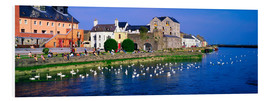 Forex  Co Galway in Ireland - The Irish Image Collection