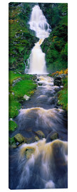 Canvas print  Assaranca Waterfall - The Irish Image Collection