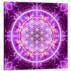 Alu-Dibond  Flower of Life - Transformation - Dolphins DreamDesign