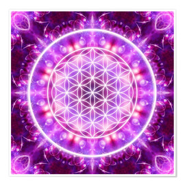 Premium poster  Flower of Life, transformation - Dolphins DreamDesign