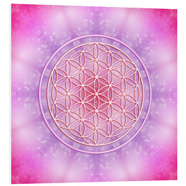 Forex  Flower of Life - Unconditional Love - Dolphins DreamDesign