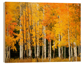 Wood print  Autumn Forest at Buffalo Pass - Ron Dahlquist
