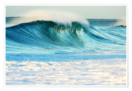 Poster  Waves in Hawaii - Vince Cavataio