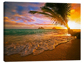 Canvas print  Lanikai Beach at sunrise - Tomas del Amo