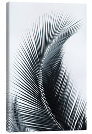 Canvas print  Palm fronds - Larry Dale Gordon