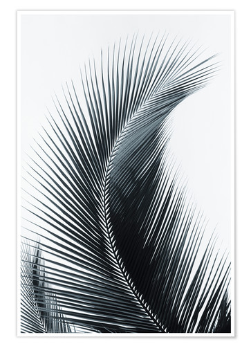 Premium poster Palm fronds