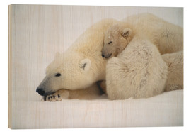 Wood print  Polar bear mother with cub - Kenneth Whitten