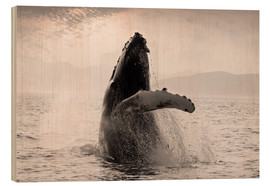 Wood print  Humpback Whale off Alaska - John Hyde