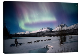 Canvas print  Dogsledding on Matanuska River - Composite Image