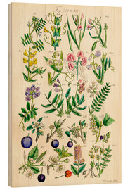 Wood print  Wildflowers - Ken Welsh