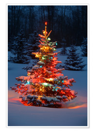 Poster  Christmas tree in snow - Carson Ganci