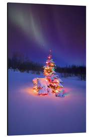 Aluminium print  Christmas tree and Northern Lights - Carson Ganci