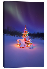 Canvas print  Christmas tree and Northern Lights - Carson Ganci