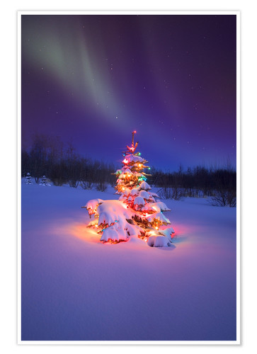 Christmas Tree And Northern Lights Posters And Prints Posterlounge