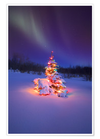 Premium poster Christmas tree and Northern Lights