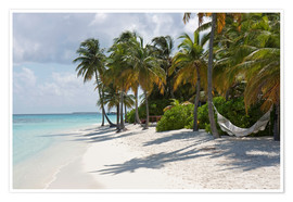Premium poster  Tropical beach with a hammock - Circumnavigation