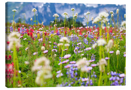 Canvas print  Wildflower meadow - Craig Tuttle