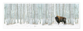 Richard Wear - Buffalo Standing In Snow Among Poplar Trees