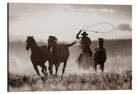 Aluminium print  Cowboy of the horses catches - Richard Wear