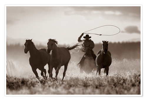 Premium poster Cowboy of the horses catches