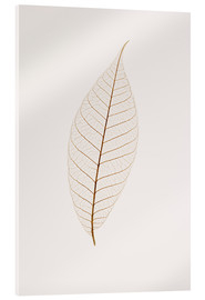 Acrylic glass  Transparent Leaf - Kelly Redinger
