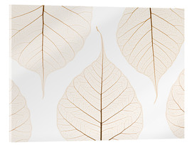 Acrylic glass  Transparent leaves - Kelly Redinger