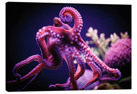 Canvas print  Octopus - Reynold Mainse