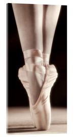 Acrylic print  Ballet Shoes - Don Hammond