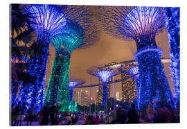 Acrylic glass  Supertrees, Singapore, Asia - Peter Schickert