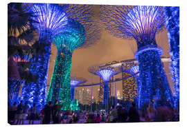Canvas  Supertrees, Singapore, Asia - Peter Schickert