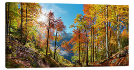 Canvas print  Mountain forest in autumn - Michael Rucker