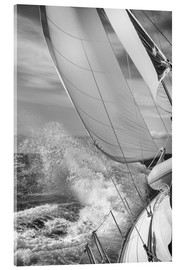 Acrylic print  Sailing black / white - Jan Schuler